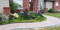 Lush flower bed with curved walkway